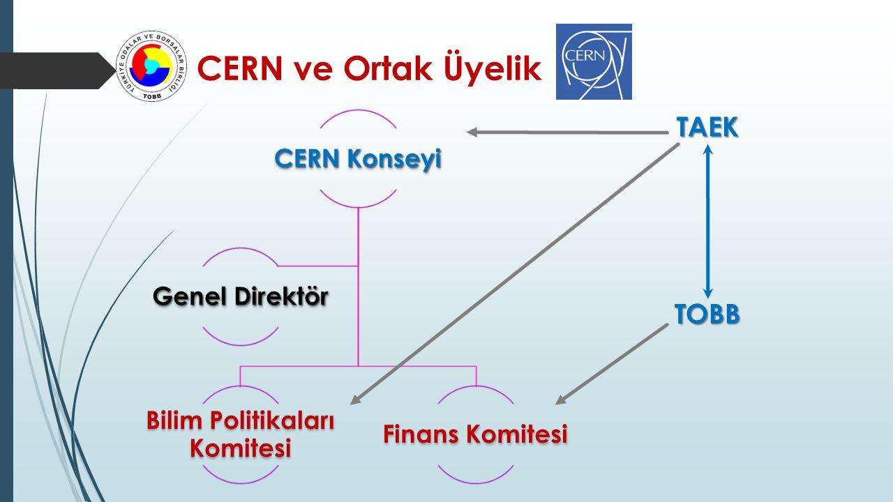 CERN Konseyi Bilim Politikaları Komitesi Finans Komitesi Genel Direktör TAEKTOBB CERN ve Ortak Üyelik