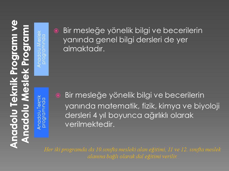 Anadolu Meslek programında Anadolu Teknik programında  Bir mesleğe yönelik bilgi ve becerilerin yanında genel bilgi dersleri de yer almaktadır.  Bir