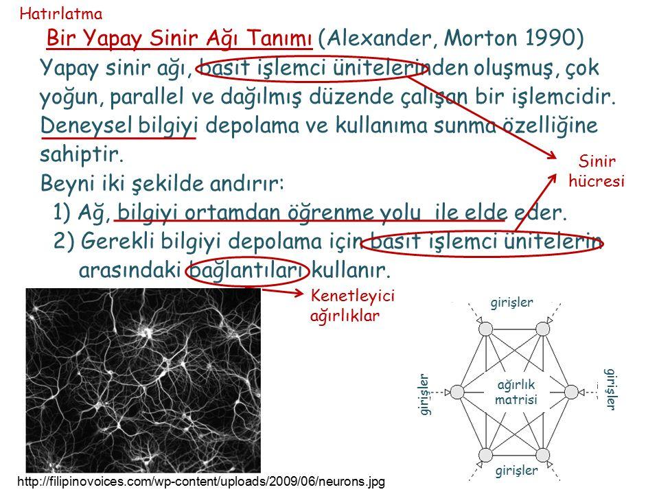 Bir Yapay Sinir Ağı Tanımı (Alexander, Morton 1990) Yapay sinir ağı, basit işlemci ünitelerinden oluşmuş, çok yoğun, parallel ve dağılmış düzende çalı