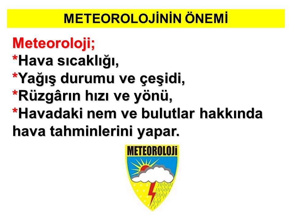 METEOROLOJİNİN ÖNEMİ Meteoroloji; *Hava sıcaklığı, *Yağış durumu ve çeşidi, *Rüzgârın hızı ve yönü, *Havadaki nem ve bulutlar hakkında hava tahminlerini yapar.