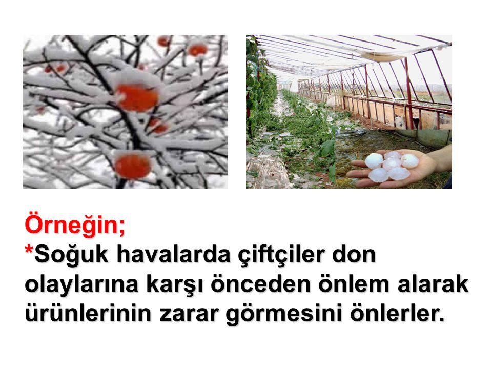 Örneğin; *Soğuk havalarda çiftçiler don olaylarına karşı önceden önlem alarak ürünlerinin zarar görmesini önlerler.