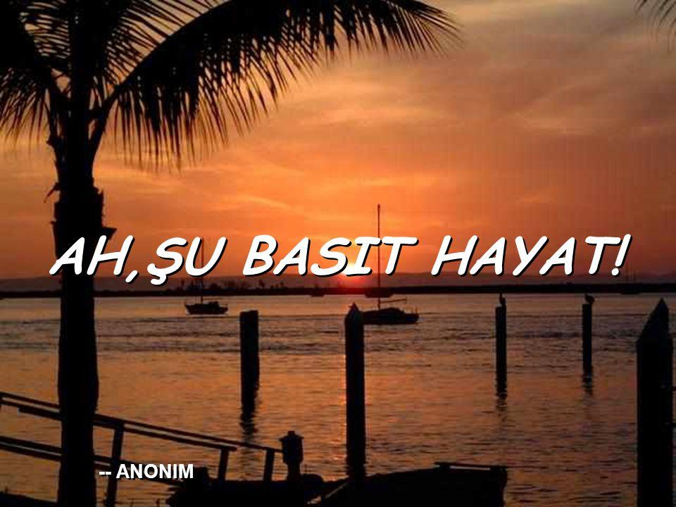 AH,ŞU BASIT HAYAT! AH,ŞU BASIT HAYAT! -- ANONIM -- ANONIM