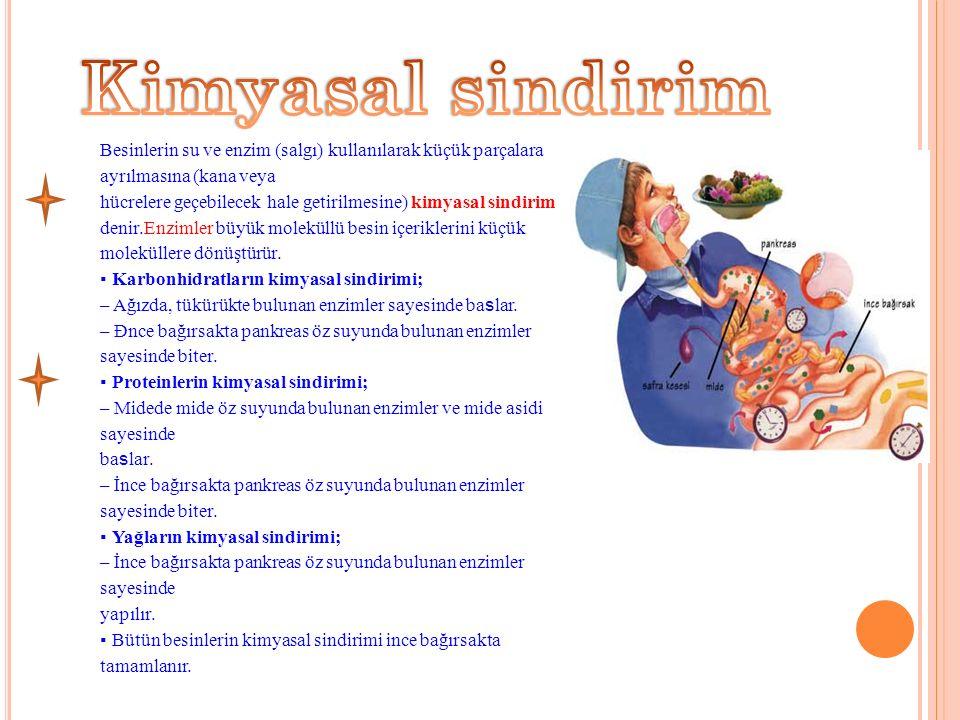 Besinlerin su ve enzim (salgı) kullanılarak küçük parçalara ayrılmasına (kana veya hücrelere geçebilecek hale getirilmesine) kimyasal sindirim denir.Enzimler büyük moleküllü besin içeriklerini küçük moleküllere dönüştürür.