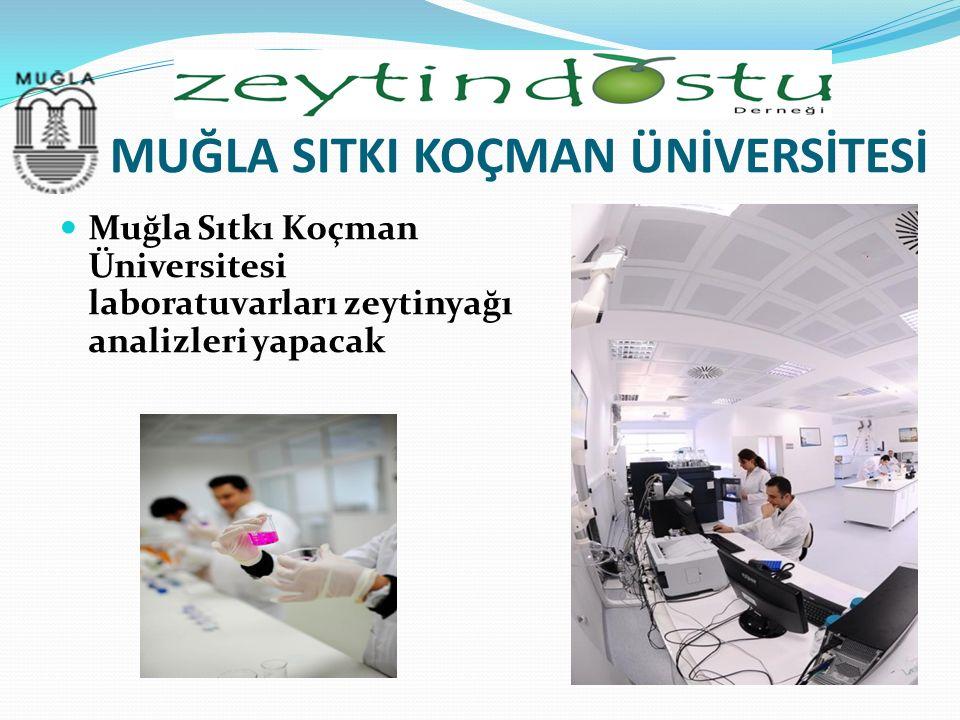 MUĞLA SITKI KOÇMAN ÜNİVERSİTESİ Muğla Sıtkı Koçman Üniversitesi laboratuvarları zeytinyağı analizleri yapacak