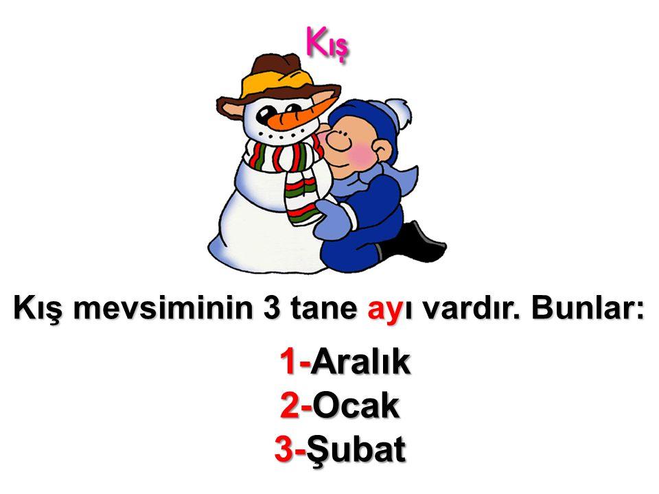 Kış mevsiminin 3 tane ayı vardır. Bunlar: 1-Aralık 2-Ocak 3-Şubat 1-Aralık 2-Ocak 3-Şubat