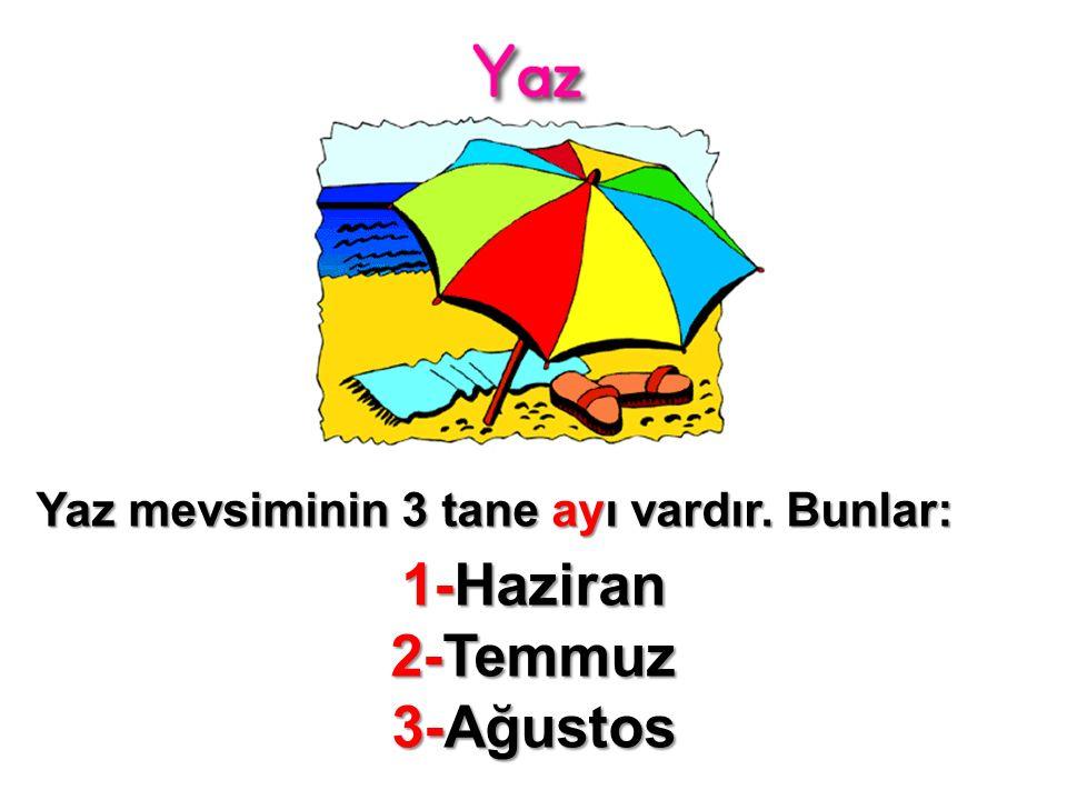 Yaz mevsiminin 3 tane ayı vardır. Bunlar: 1-Haziran 2-Temmuz 3-Ağustos