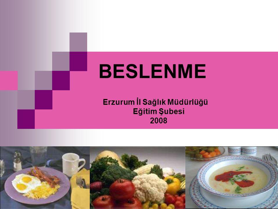BESLENME Erzurum İl Sağlık Müdürlüğü Eğitim Şubesi 2008