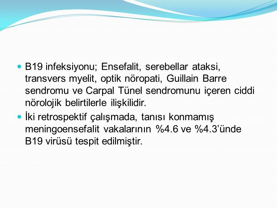 B19 infeksiyonu; Ensefalit, serebellar ataksi, transvers myelit, optik nöropati, Guillain Barre sendromu ve Carpal Tünel sendromunu içeren ciddi nörol