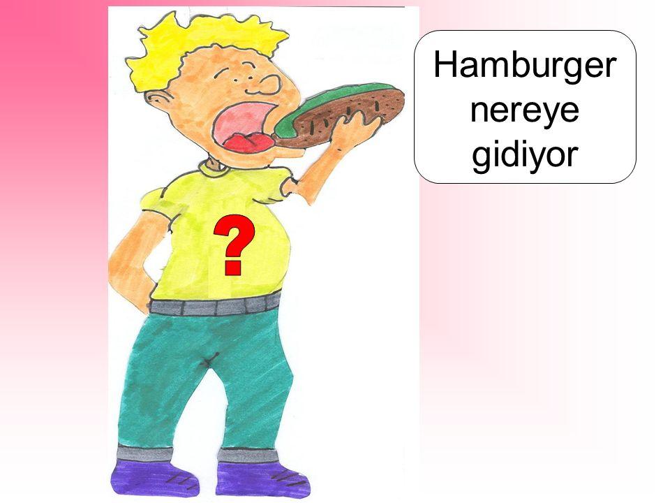 Hamburger nereye gidiyor