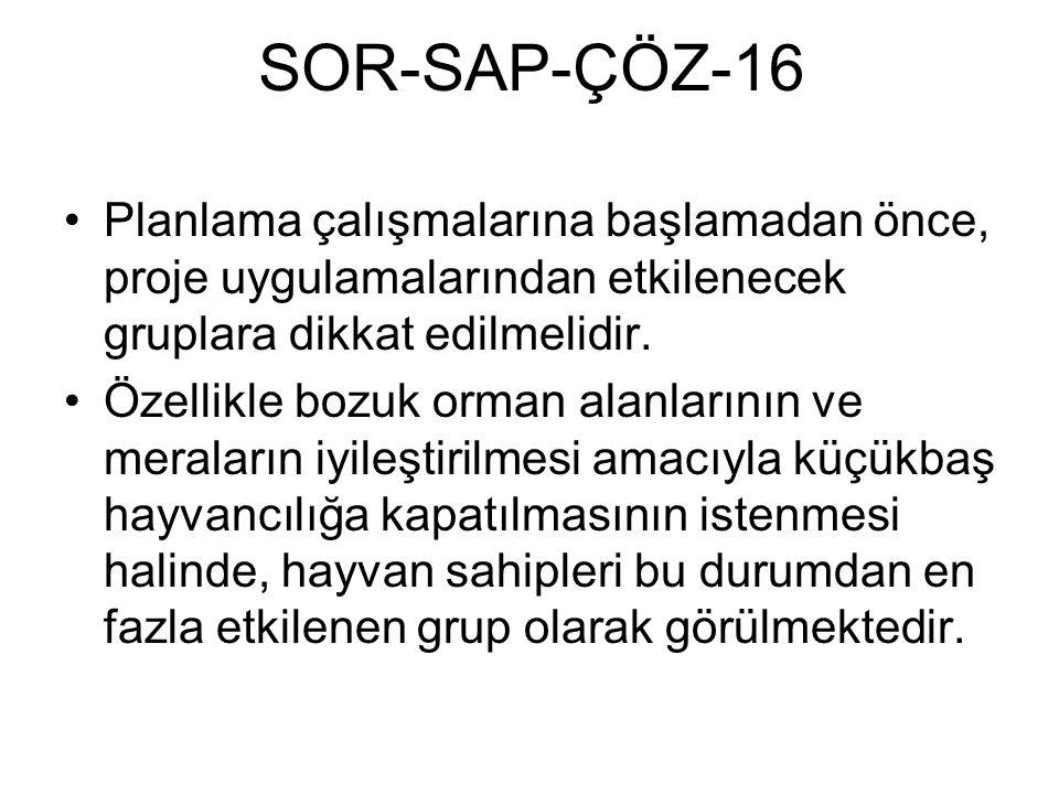SOR-SAP-ÇÖZ-16 Planlama çalışmalarına başlamadan önce, proje uygulamalarından etkilenecek gruplara dikkat edilmelidir. Özellikle bozuk orman alanların