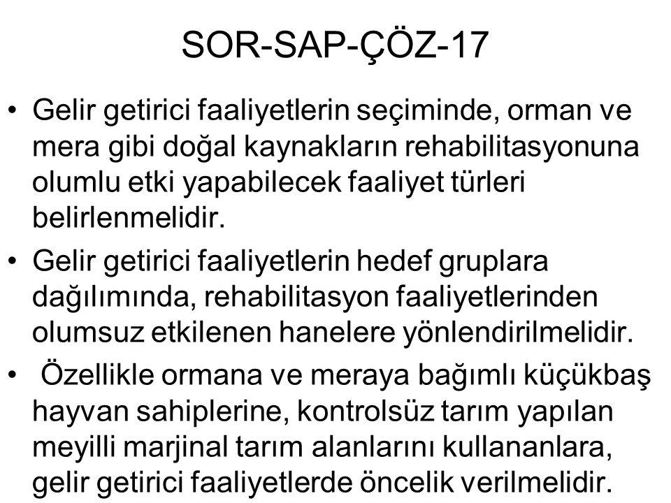 SOR-SAP-ÇÖZ-17 Gelir getirici faaliyetlerin seçiminde, orman ve mera gibi doğal kaynakların rehabilitasyonuna olumlu etki yapabilecek faaliyet türleri