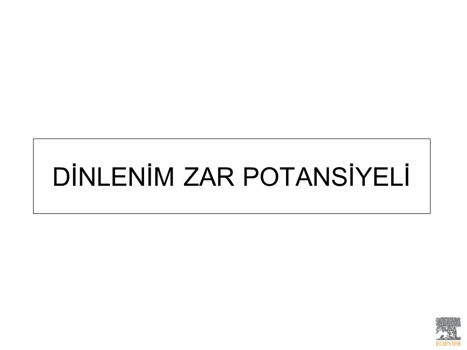 DİNLENİM ZAR POTANSİYELİ