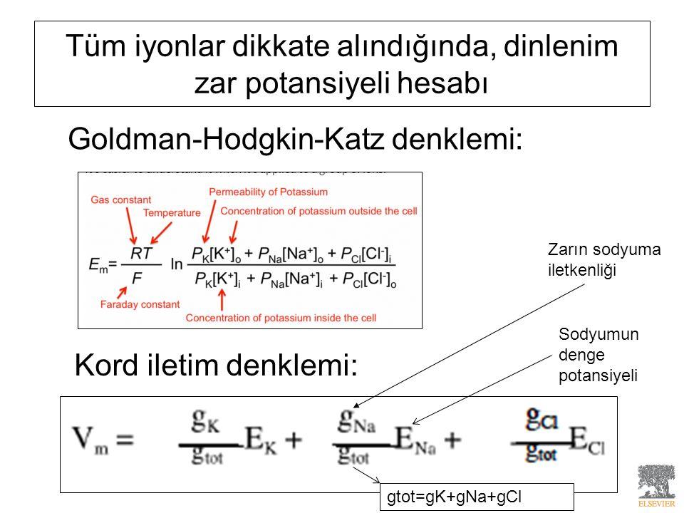 Tüm iyonlar dikkate alındığında, dinlenim zar potansiyeli hesabı Goldman-Hodgkin-Katz denklemi: Kord iletim denklemi: Zarın sodyuma iletkenliği Sodyum