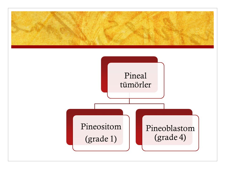 Pineal tümörler Pineositom (grade 1) Pineoblastom (grade 4)