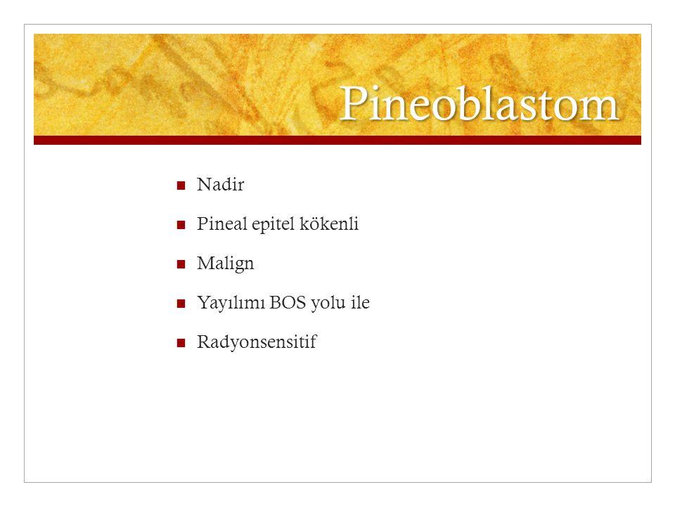 Pineoblastom Nadir Pineal epitel kökenli Malign Yayılımı BOS yolu ile Radyonsensitif