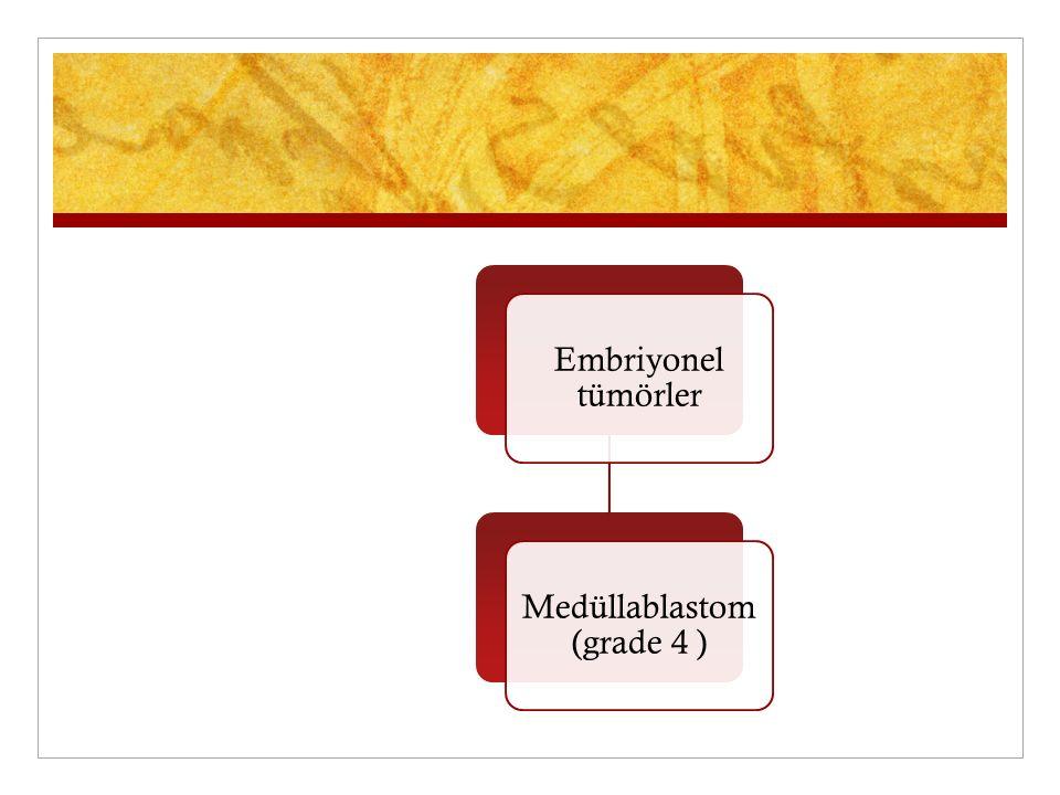 Embriyonel tümörler Medüllablastom (grade 4 )