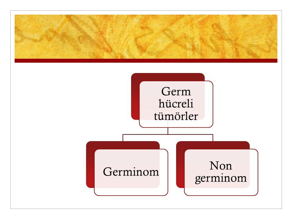 Germ hücreli tümörler Germinom Non germinom