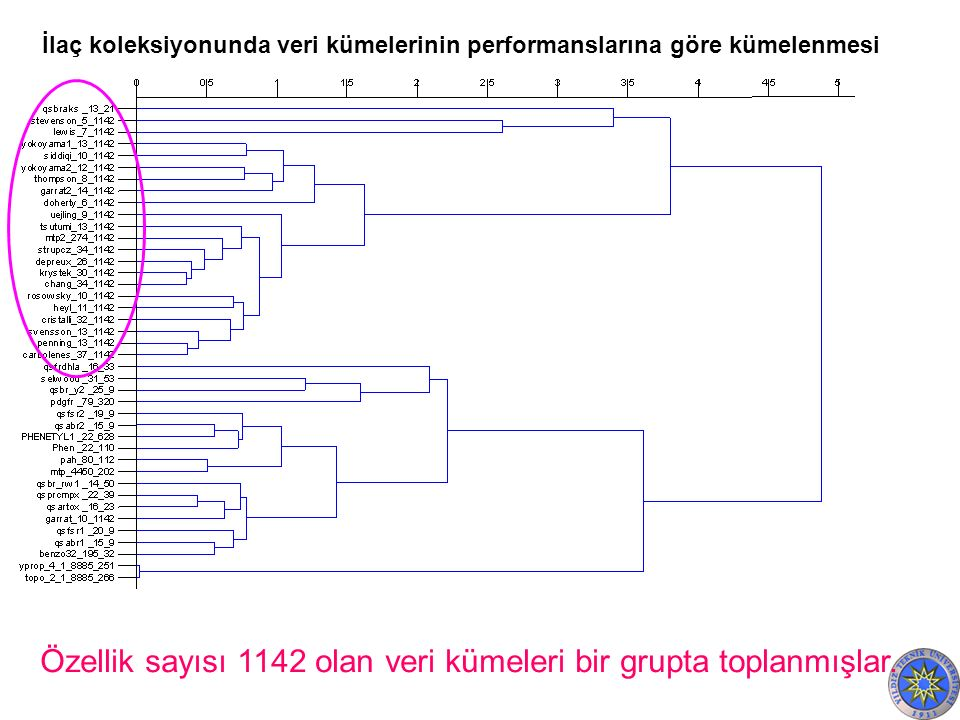 Özellik sayısı 1142 olan veri kümeleri bir grupta toplanmışlar.