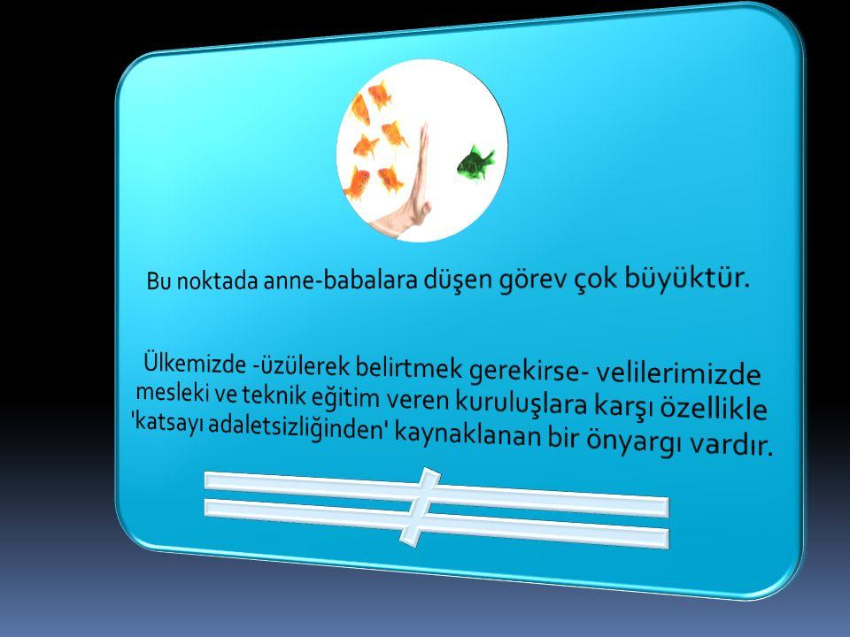 TÜRKİYE'NİN SORUNU İŞSİZLİK DEĞİL MESLEKSİZLİKTİR!...