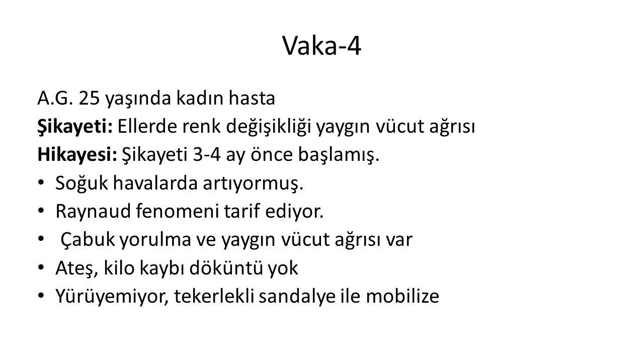 Vaka-4 A.G.