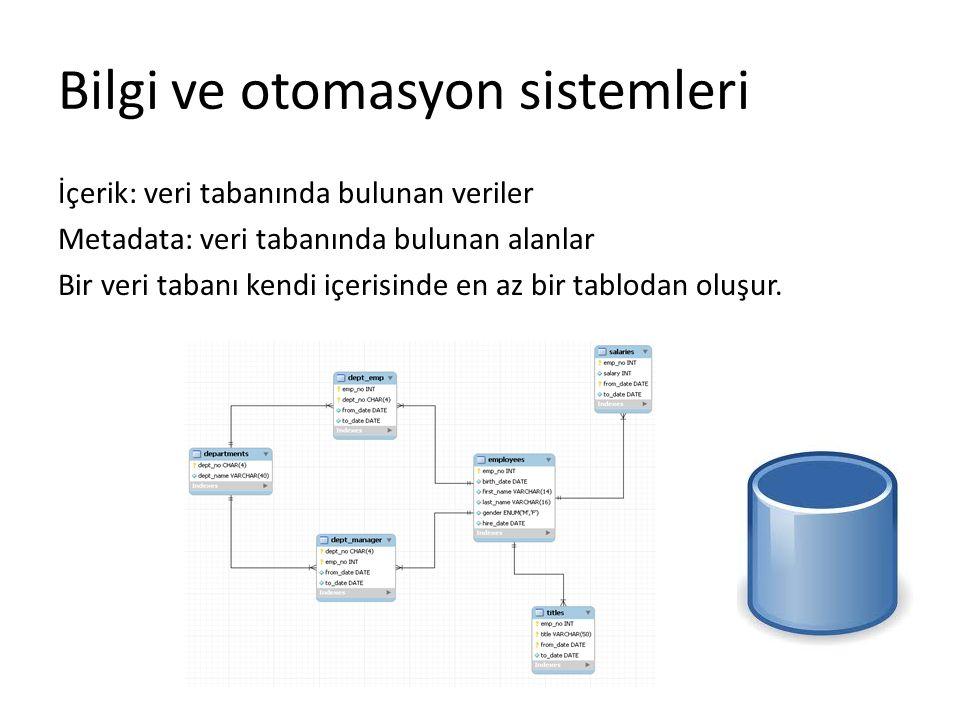 Bilgi ve otomasyon sistemleri İçerik: veri tabanında bulunan veriler Metadata: veri tabanında bulunan alanlar Bir veri tabanı kendi içerisinde en az b