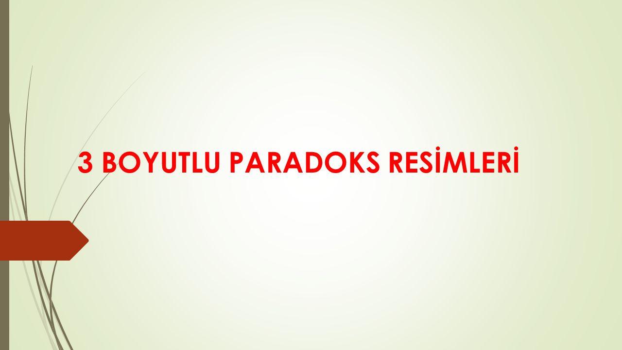 3 BOYUTLU PARADOKS RESİMLERİ
