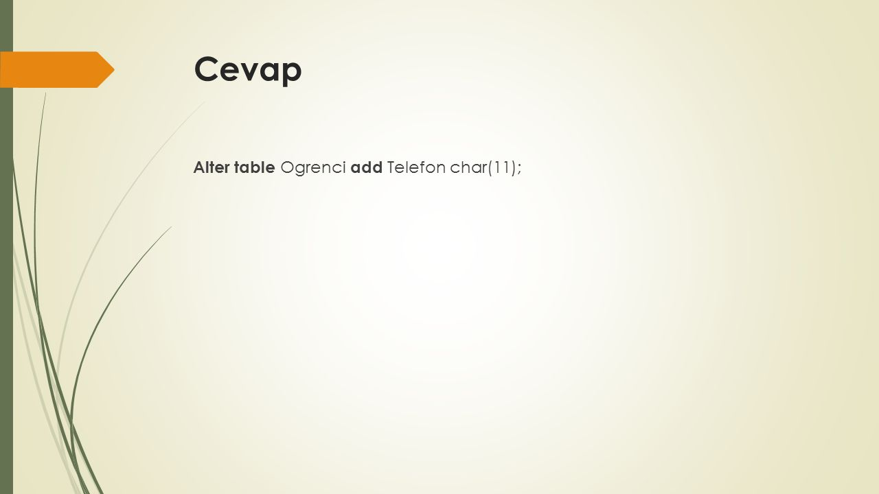 Cevap Alter table Ogrenci add Telefon char(11);