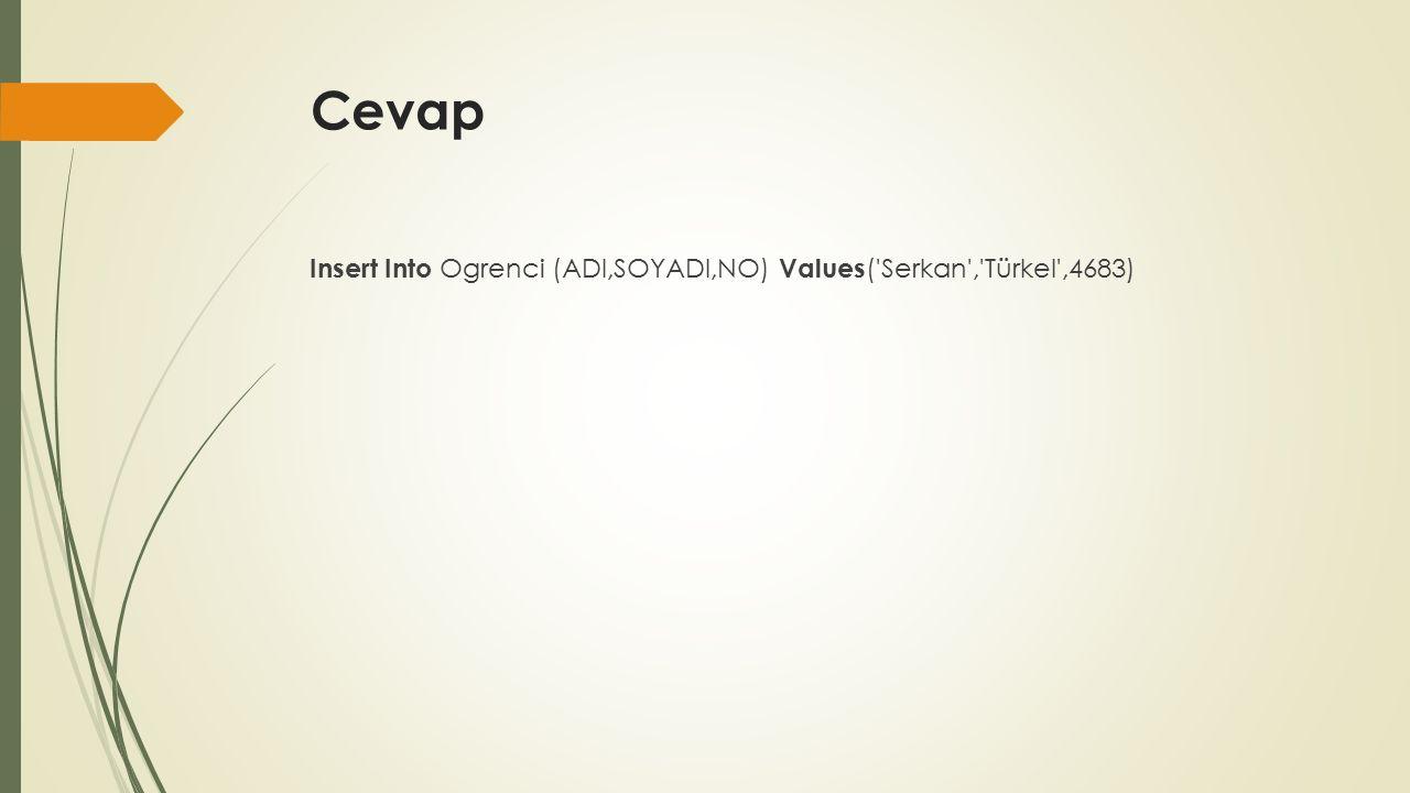 Cevap Insert Into Ogrenci (ADI,SOYADI,NO) Values ( Serkan , Türkel ,4683)