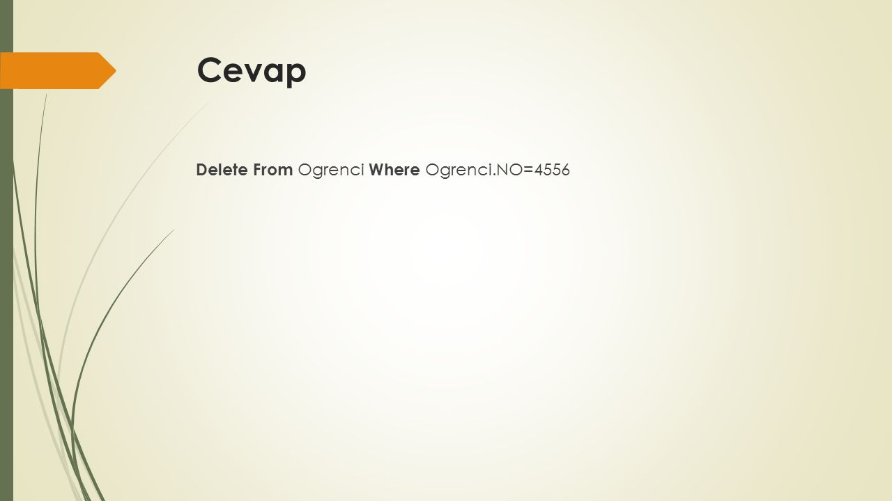 Cevap Delete From Ogrenci Where Ogrenci.NO=4556