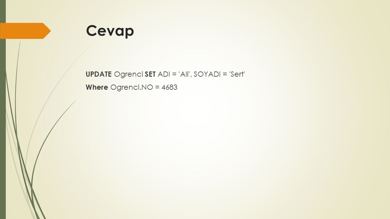 Cevap UPDATE Ogrenci SET ADI = Ali , SOYADI = Sert Where Ogrenci.NO = 4683