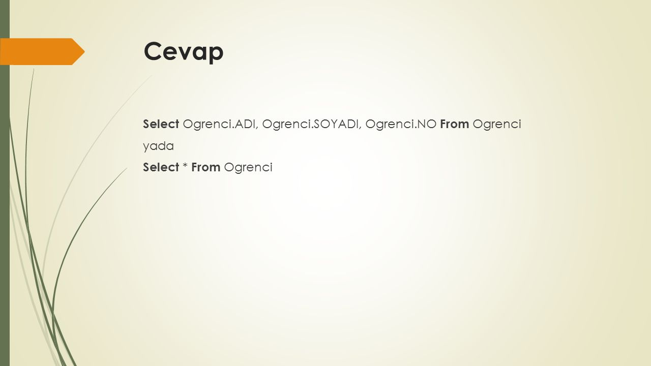 Cevap Select Ogrenci.ADI, Ogrenci.SOYADI, Ogrenci.NO From Ogrenci yada Select * From Ogrenci