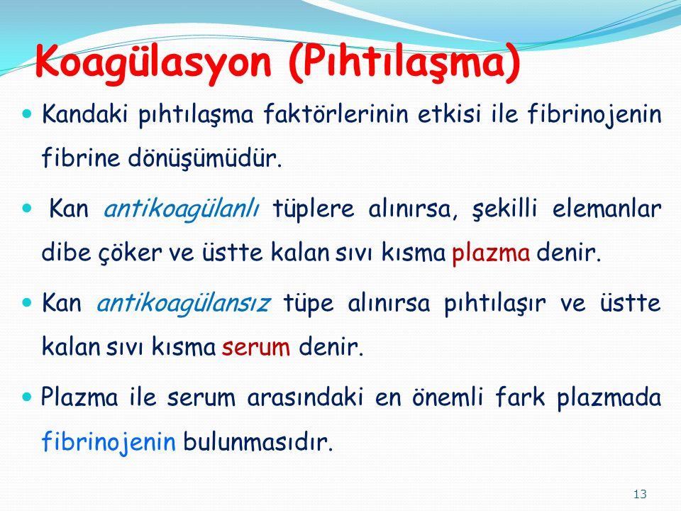 Koagülasyon (Pıhtılaşma) Kandaki pıhtılaşma faktörlerinin etkisi ile fibrinojenin fibrine dönüşümüdür.