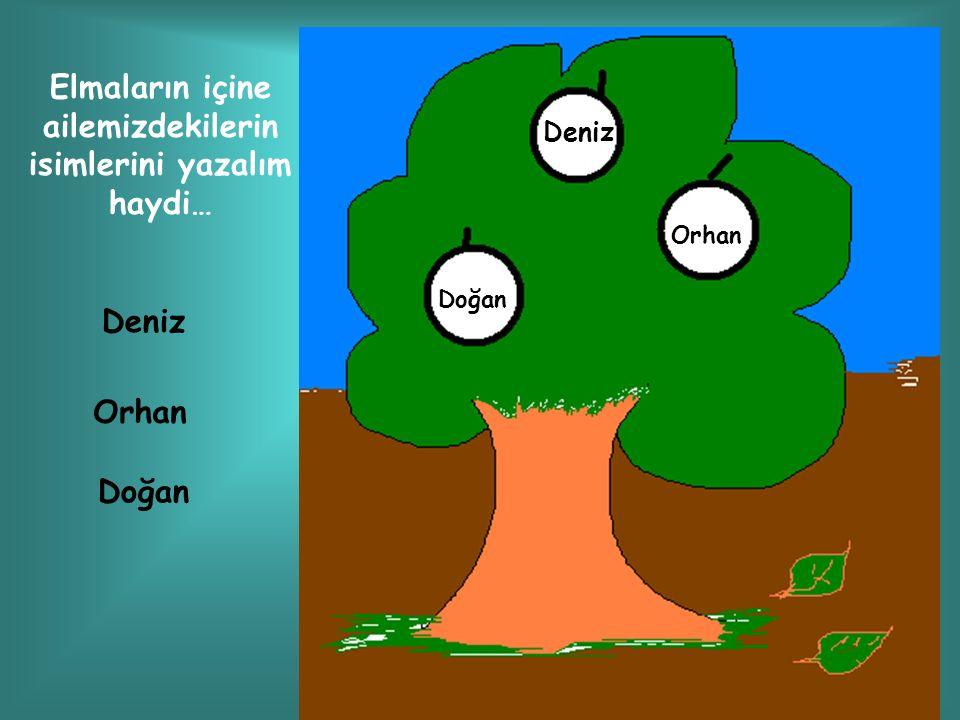 Deniz Orhan Doğan Elmaların içine ailemizdekilerin isimlerini yazalım haydi… Deniz Orhan Doğan