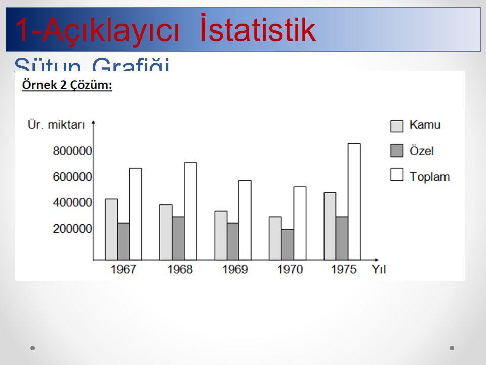 1-Açıklayıcı İstatistik Sütun Grafiği