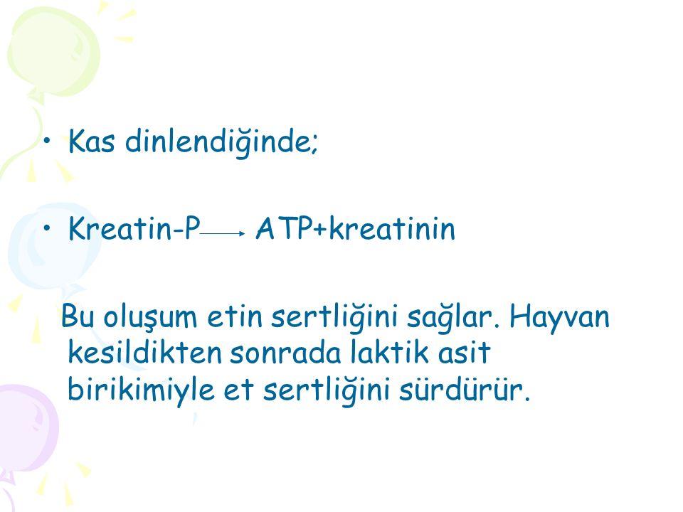 Kas dinlendiğinde; Kreatin-P ATP+kreatinin Bu oluşum etin sertliğini sağlar.
