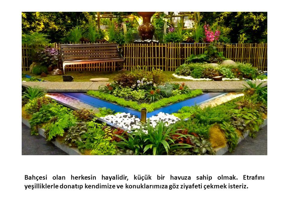 Bahçesi olan herkesin hayalidir, küçük bir havuza sahip olmak.