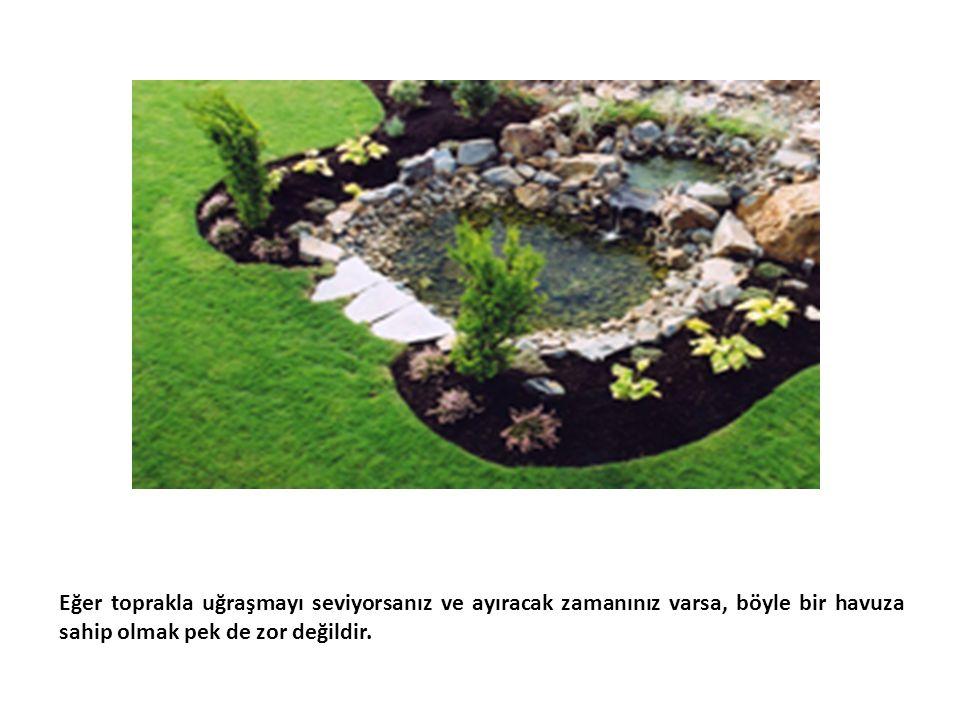 Eğer toprakla uğraşmayı seviyorsanız ve ayıracak zamanınız varsa, böyle bir havuza sahip olmak pek de zor değildir.