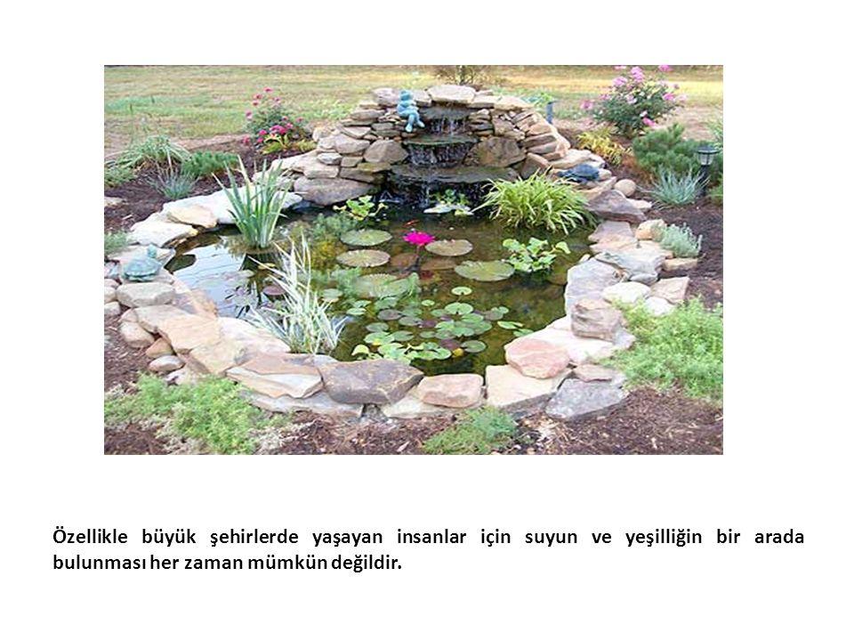 Özellikle büyük şehirlerde yaşayan insanlar için suyun ve yeşilliğin bir arada bulunması her zaman mümkün değildir.