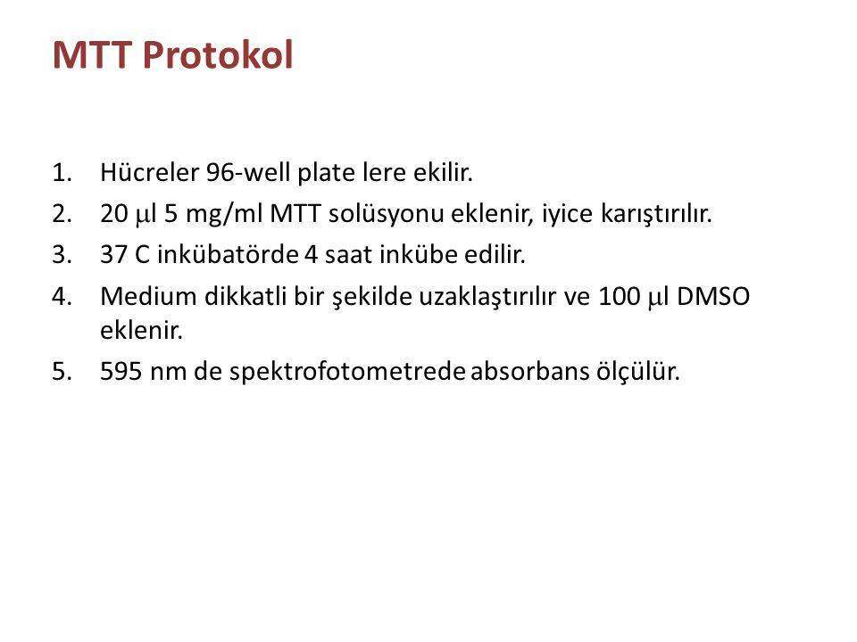 MTT Protokol 1.Hücreler 96-well plate lere ekilir. 2.20  l 5 mg/ml MTT solüsyonu eklenir, iyice karıştırılır. 3.37 C inkübatörde 4 saat inkübe edilir