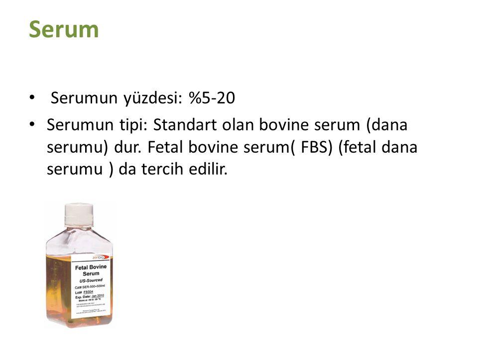 Serum Serumun yüzdesi: %5-20 Serumun tipi: Standart olan bovine serum (dana serumu) dur. Fetal bovine serum( FBS) (fetal dana serumu ) da tercih edili