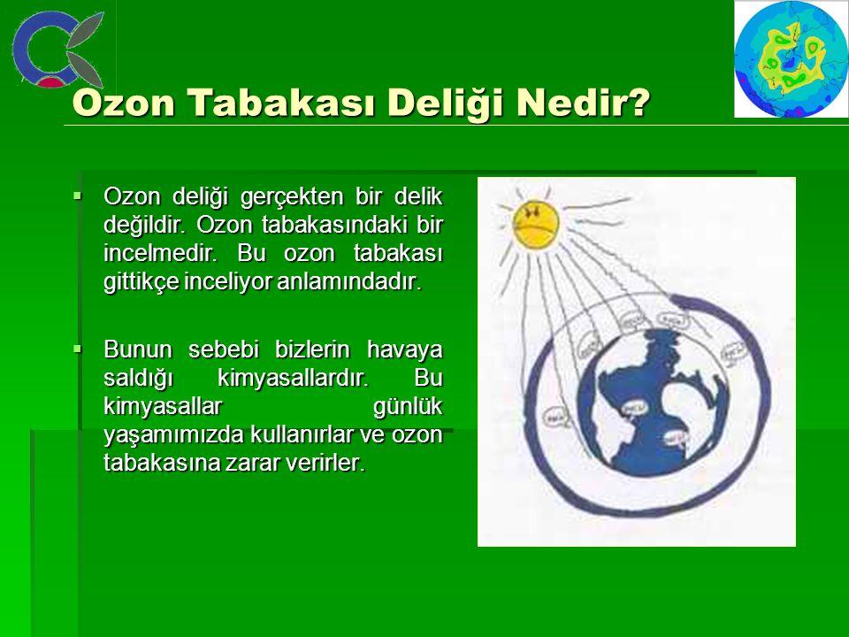  Ozon deliği gerçekten bir delik değildir. Ozon tabakasındaki bir incelmedir. Bu ozon tabakası gittikçe inceliyor anlamındadır.  Bunun sebebi bizler