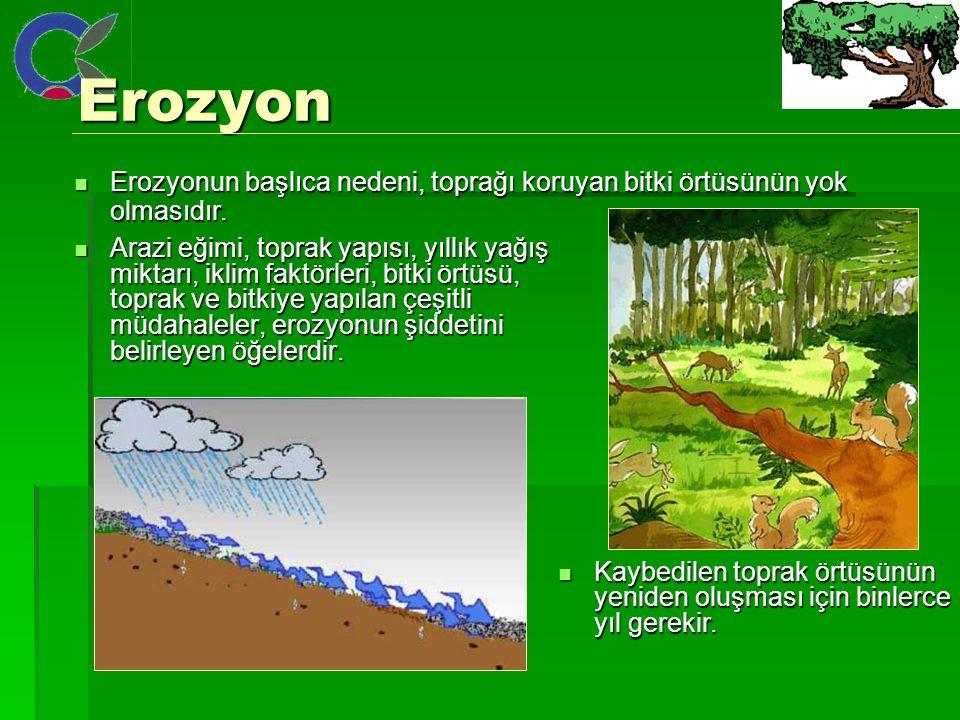 Erozyon Erozyon Arazi eğimi, toprak yapısı, yıllık yağış miktarı, iklim faktörleri, bitki örtüsü, toprak ve bitkiye yapılan çeşitli müdahaleler, erozyonun şiddetini belirleyen öğelerdir.