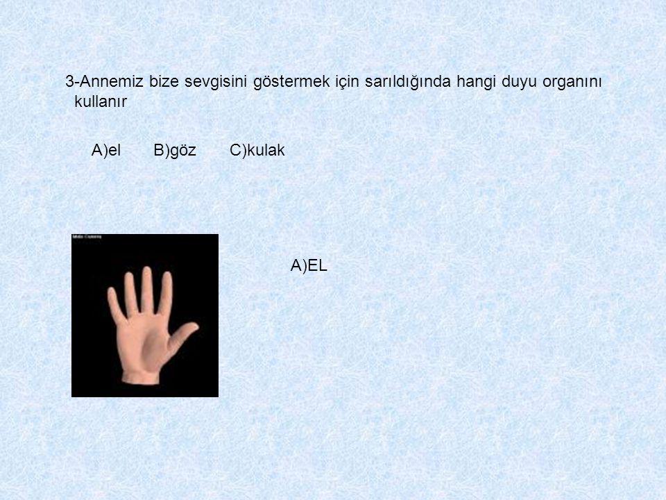 3-Annemiz bize sevgisini göstermek için sarıldığında hangi duyu organını kullanır A)el B)göz C)kulak A)EL