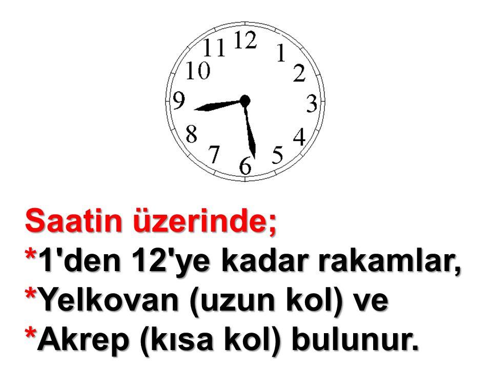Saatin üzerinde; *1'den 12'ye kadar rakamlar, *Yelkovan (uzun kol) ve *Akrep (kısa kol) bulunur.