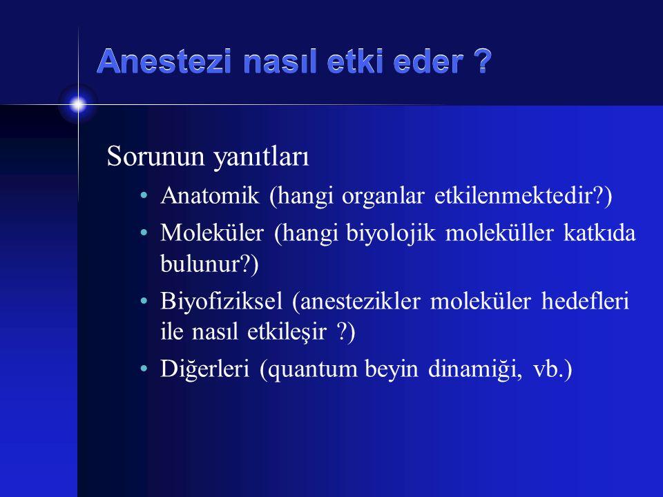 Anestezi nasıl etki eder ? Sorunun yanıtları Anatomik (hangi organlar etkilenmektedir?) Moleküler (hangi biyolojik moleküller katkıda bulunur?) Biyofi