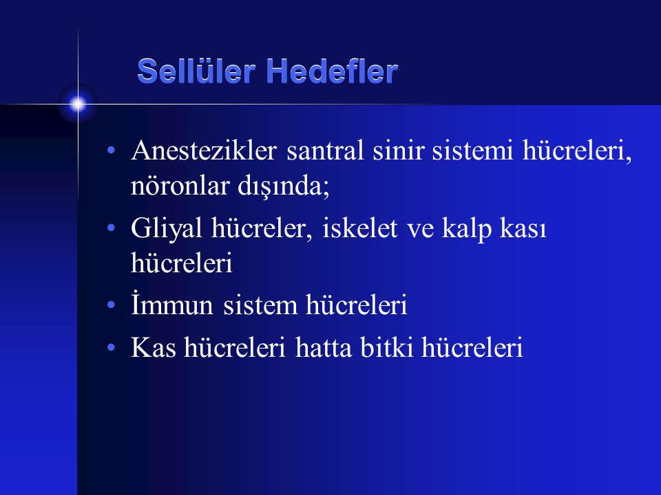 Sellüler Hedefler Anestezikler santral sinir sistemi hücreleri, nöronlar dışında; Gliyal hücreler, iskelet ve kalp kası hücreleri İmmun sistem hücrele