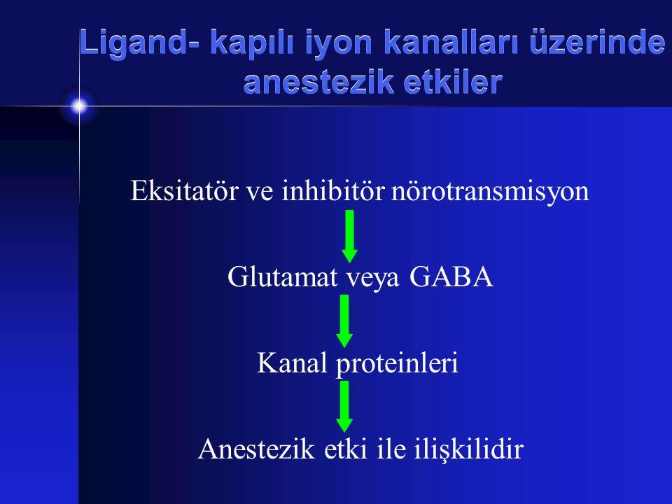 Ligand- kapılı iyon kanalları üzerinde anestezik etkiler Eksitatör ve inhibitör nörotransmisyon Glutamat veya GABA Kanal proteinleri Anestezik etki il