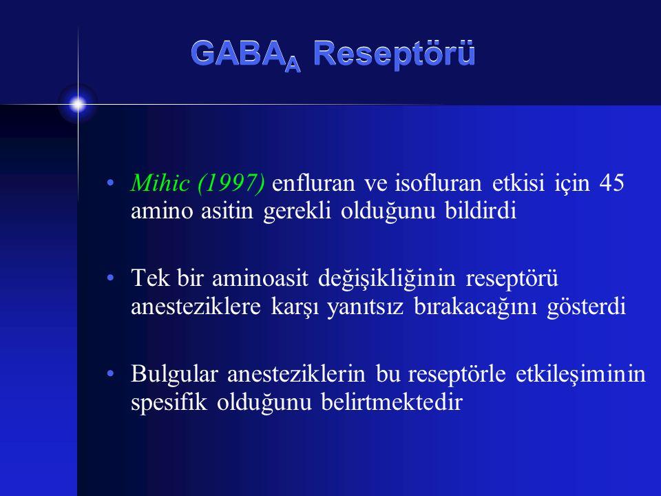 GABA A Reseptörü Mihic (1997) enfluran ve isofluran etkisi için 45 amino asitin gerekli olduğunu bildirdi Tek bir aminoasit değişikliğinin reseptörü a