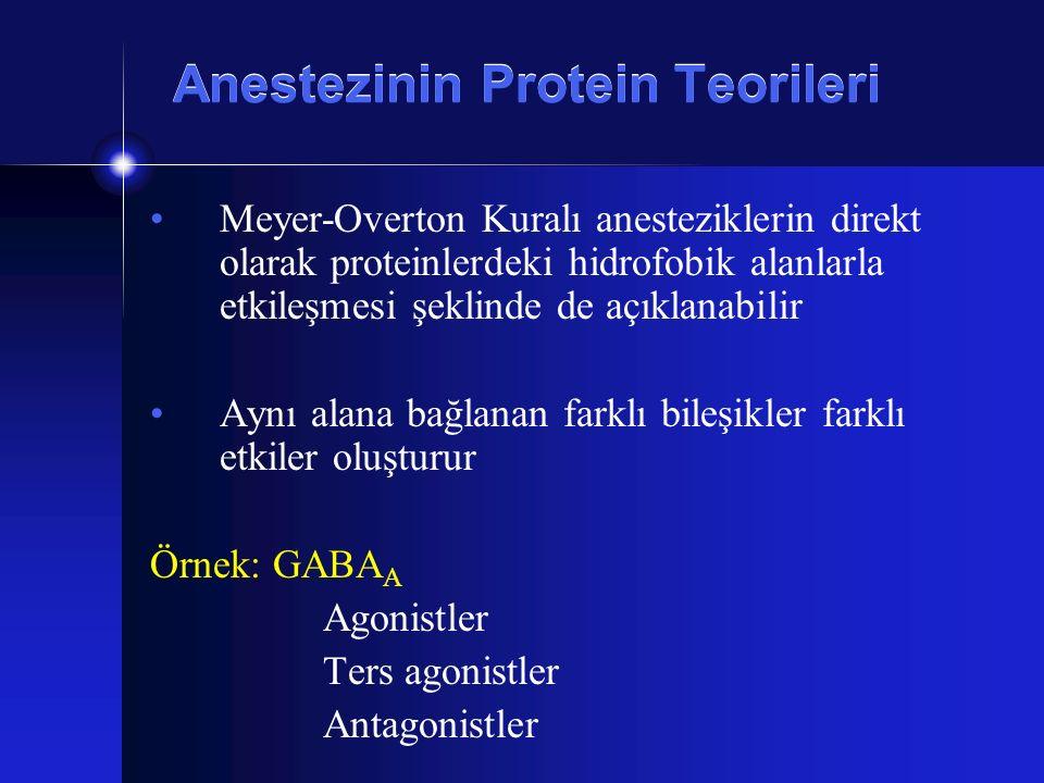 Anestezinin Protein Teorileri Meyer-Overton Kuralı anesteziklerin direkt olarak proteinlerdeki hidrofobik alanlarla etkileşmesi şeklinde de açıklanabi