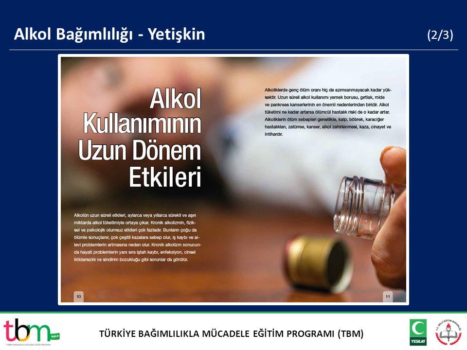 (2/3) Alkol Bağımlılığı - Yetişkin TÜRKİYE BAĞIMLILIKLA MÜCADELE EĞİTİM PROGRAMI (TBM)